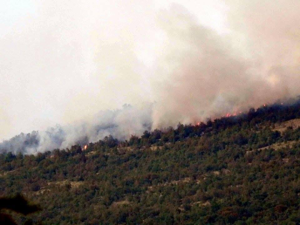 Požar na Učki – 27.07.2016.